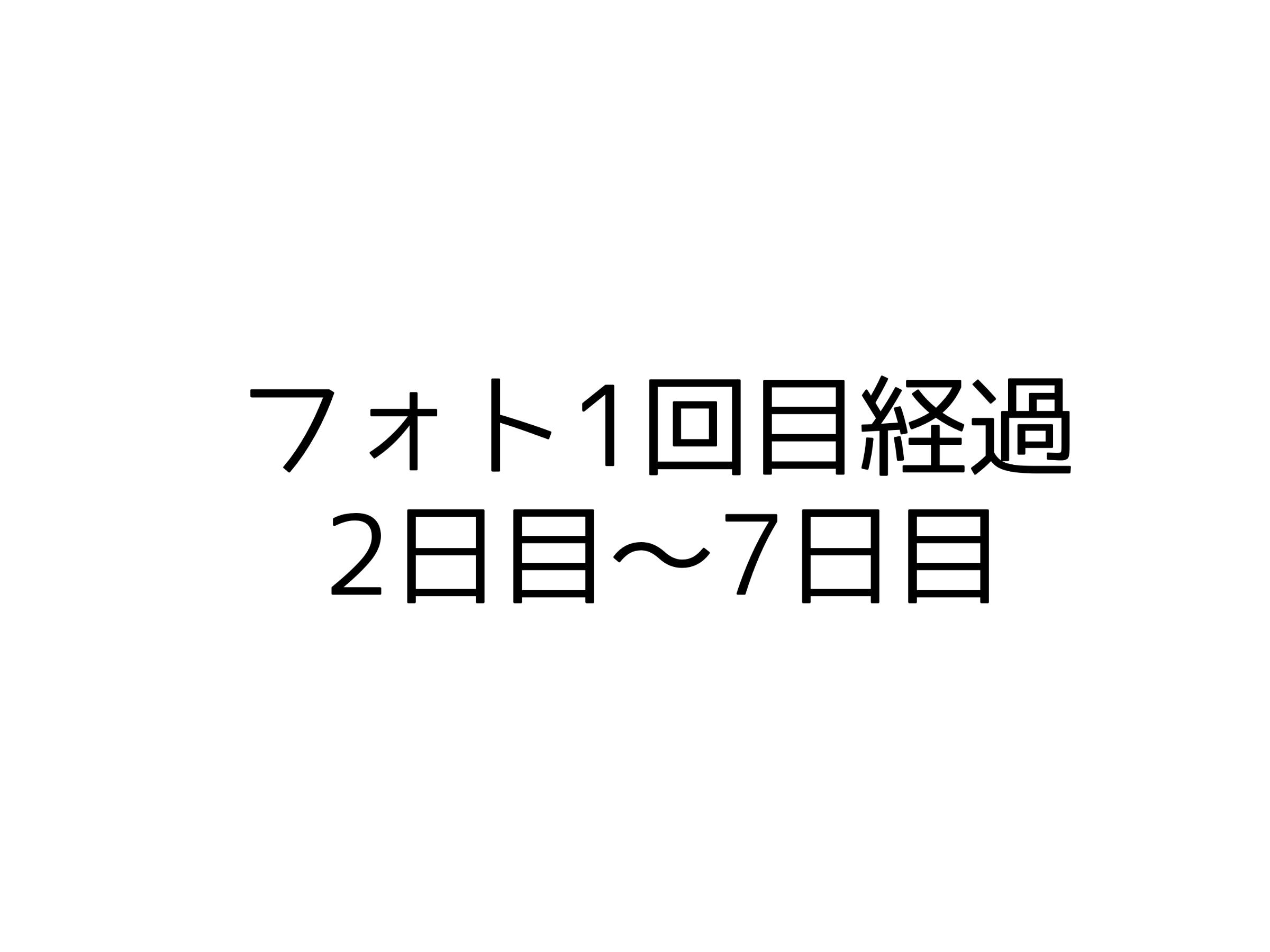 フォト1回目経過2日目〜7日目